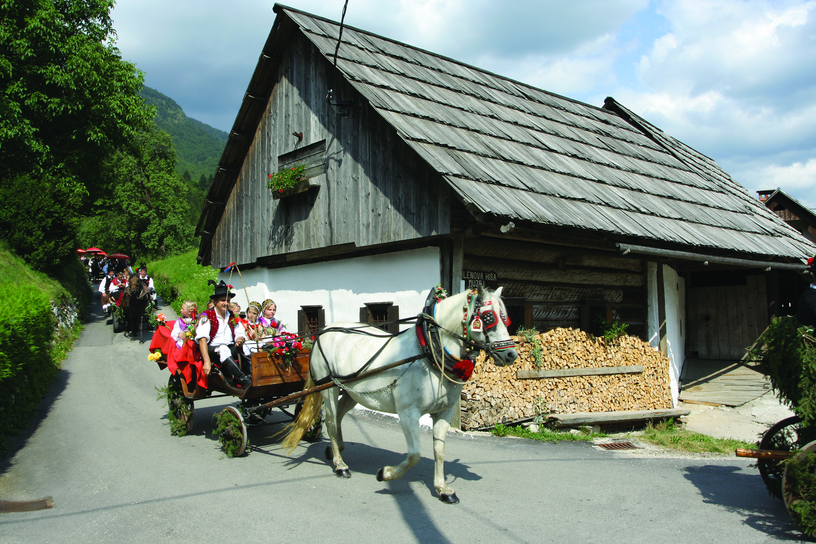 Bohinj countryside